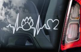 Paw Heartbeat