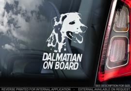 Dalmatier - Dalmatian - V01