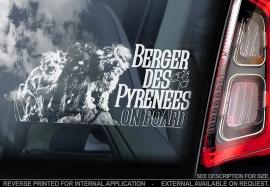 Pyreneese Herdershond  - Berger de Pyrenese - Pyrenean Shepherd  V05
