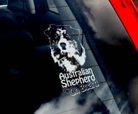 Australian Shepherd V03