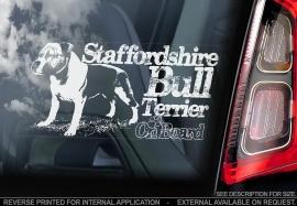 Staffordshire Bull Terrier V10
