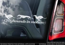 Greyhound V03