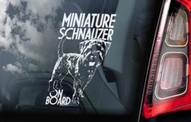 Dwerg Schnauzer - Miniature Schnauzer  V02