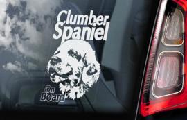 Clumber Spaniel V01