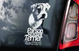 Parson Russel Terrier V01