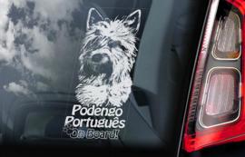 Podengo  Portugues V02