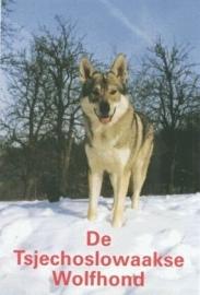 De Tsjechoslowaakse Wolfhond