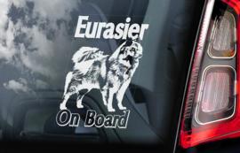Eurasier V01