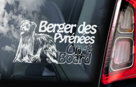 Pyreneese Herdershond - Berger de Pyrenese - Pyrenean Shepherd  V03