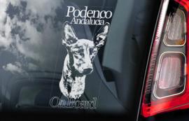 Podenco Andalucia V01