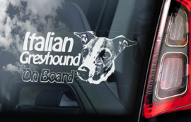 Italiaans Windhondje - Italian Greyhound V01