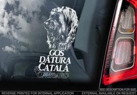 Gos datura Catala - Catalaanse Herder - Catalan Sheepdog V01