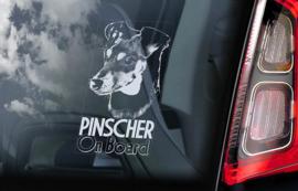 Pinscher V03