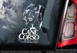Cane Corso  V04