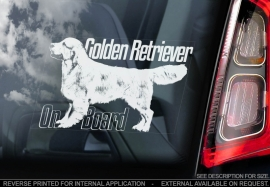 Golden Retriever V04