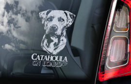 Catahoula Leopard Dog V01