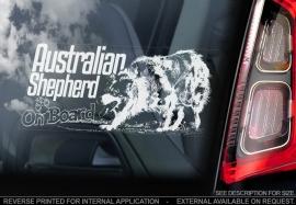 Australian Shepherd V05