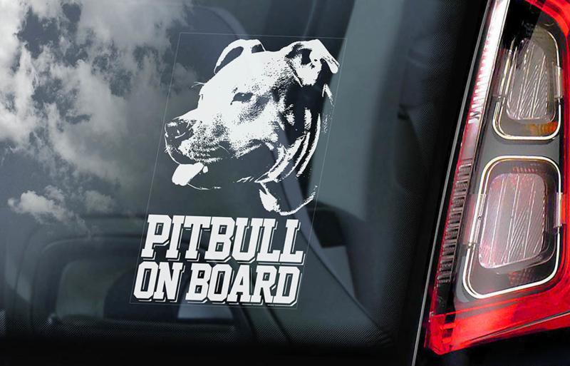 Pitbull V01 INSIDE