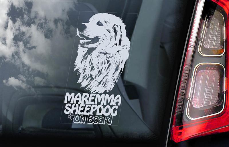 Berghond van de Maremmen - Maremma Sheepdog V03
