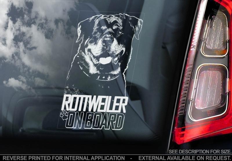 Rottweiler V04 INSIDE