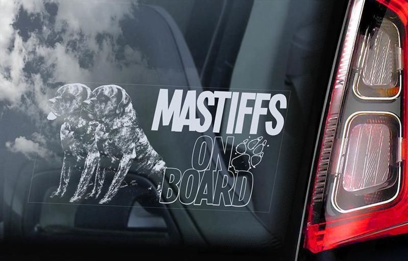 Old English Mastiff V07