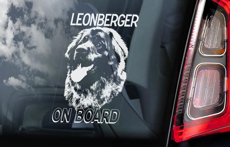 Leonberger V01