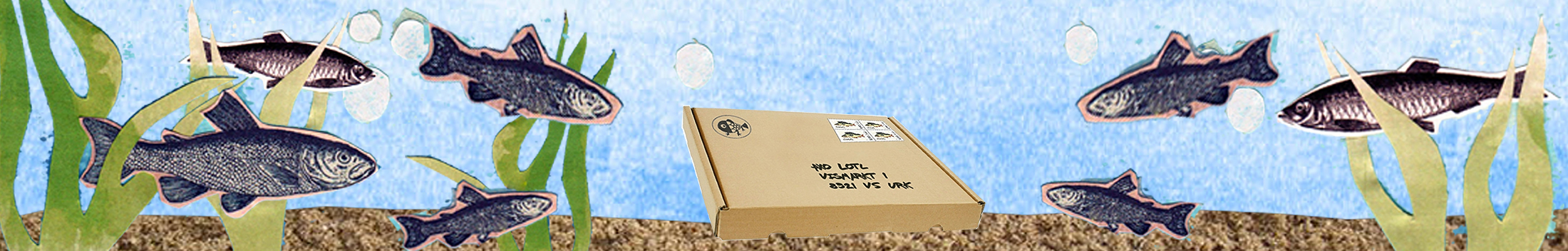 viscollage goede doos
