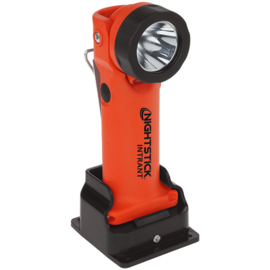 Nightstick Intrant 230V ATEX