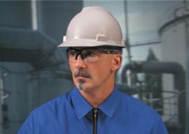 MSA Veiligheidsbril Perspecta 1320 Helder
