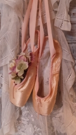 Balletspitzen zalm VERKOCHT