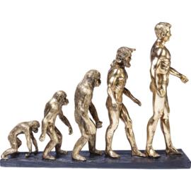 Deco beeld figuratie Evolutie