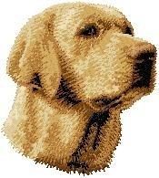 D 14 a Labrador blond