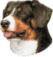 D47 Swiss Mountain Dog