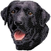 D4 Labrador zwart