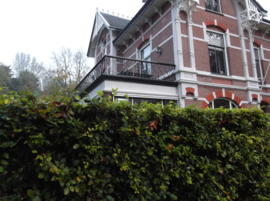 Balustrade balkon Nijmegen