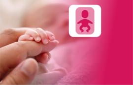 Data op aanvraag:  Couveuse nazorg; Pre-dysmature pasgeborene