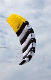Zebra Checka 1.5