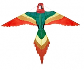 Papagaai L