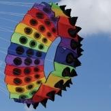 Rainbow Bol