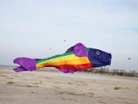 Windzak rainbow fish