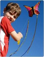 106543-butterfly-kite-ruby-llbs.jpg