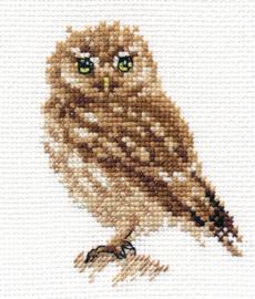 Owl  al-00-166