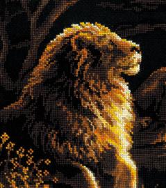 Lions in the savannah - Riolis