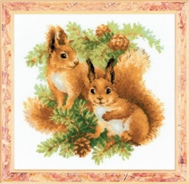 Squirrels ri-1491