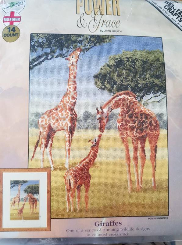 Giraffes - Power & Grace