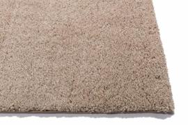Carpet Loranda
