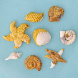 Shells & Starfish (Alphabet Moulds)