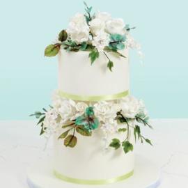 Flower & Modelling Paste