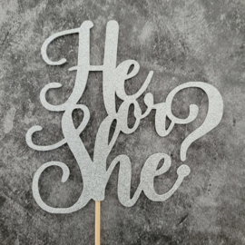 He or she zilver