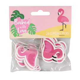Flamingo pics - 24 st